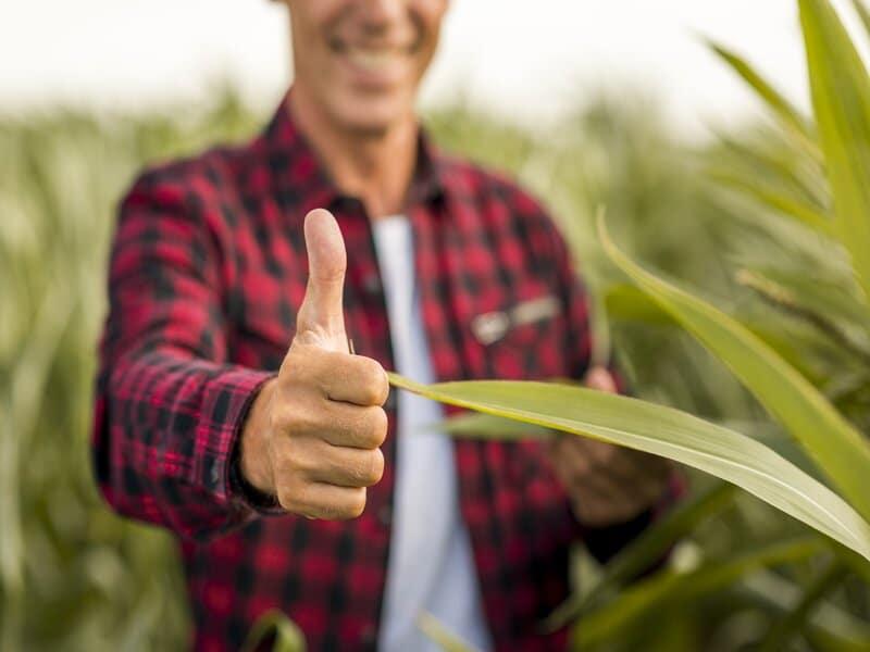 Recrutement des cadres du secteur agricole