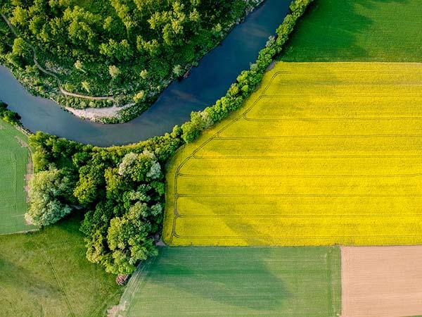 champs vue du ciel